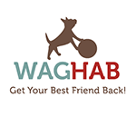 WagHab: Asheville Dog Rehabilitation